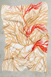 http://www.dutchinvertuals.nl/collected/site/wp-content/uploads/ROOTS_SCARF_RED_2013_EDHV_HR_001.jpg